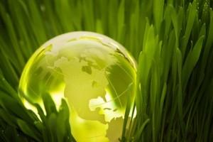 manutenzione ecocompatibile campi di calcio, rugby, golf