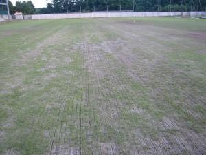 Manutenzione campi di calcio e rugby