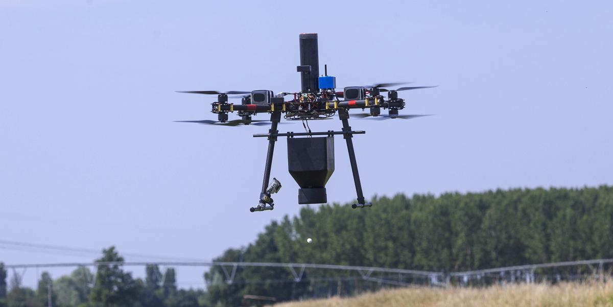 Drone_trichogramma